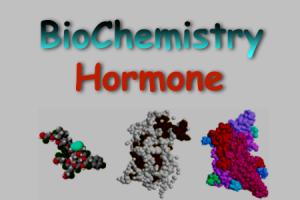 آموزش بیوشیمی هورمون