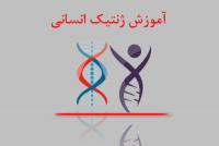 آموزش ژنتیک انسانی